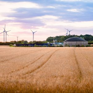 Biogasanlage auf dem Krumbecker Hof